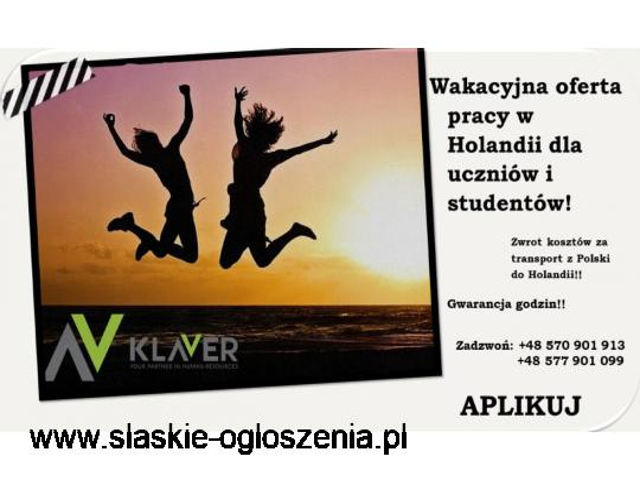 Praca dla uczniów/studentów bez wiekówki ! Od zaraz w Holandii